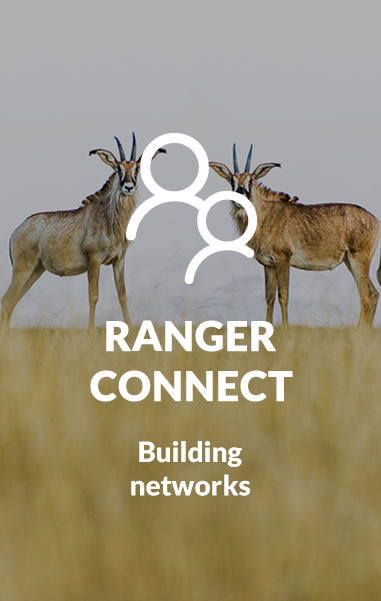 ranger connect
